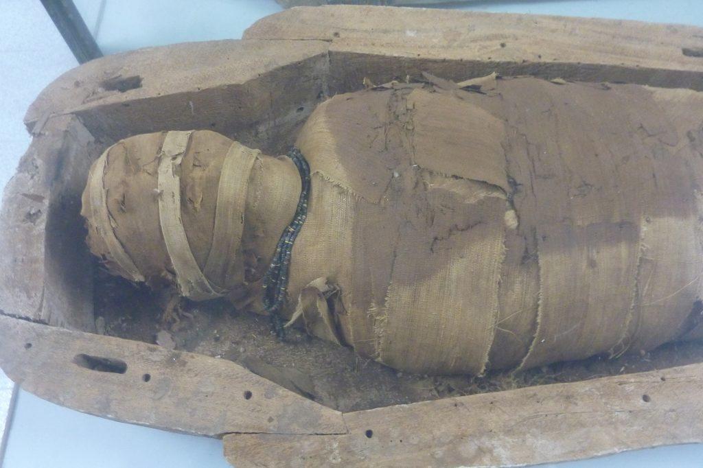 Museu Bíblic mòmia