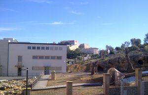 Monogràfic del Puig dels Molins